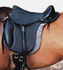 Treating Founder (Chronic Laminitis) without Horseshoes, 19